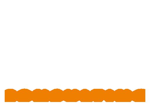DSC Dietmar Schickel Consulting